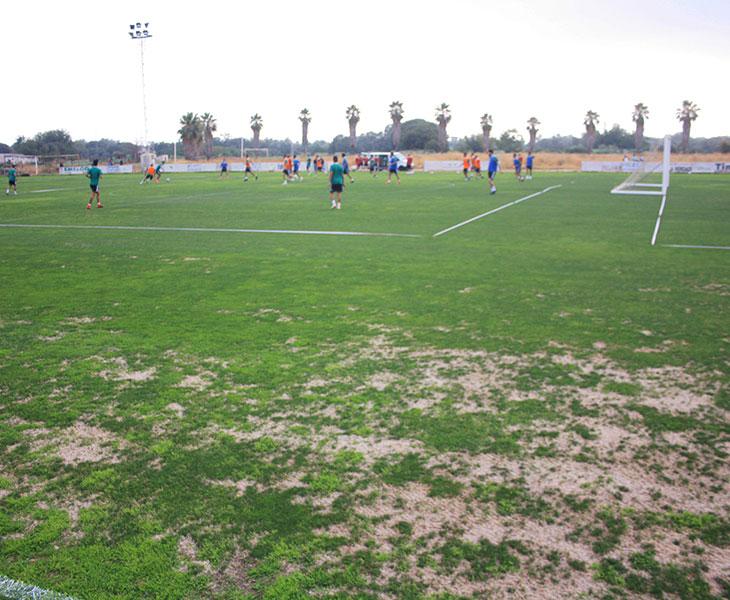Así está el césped de la Ciudad Deportiva para los primeros días de entrenamiento de pretemporada