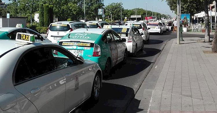 Varios taxistas en Córdoba. Foto: Europa Press