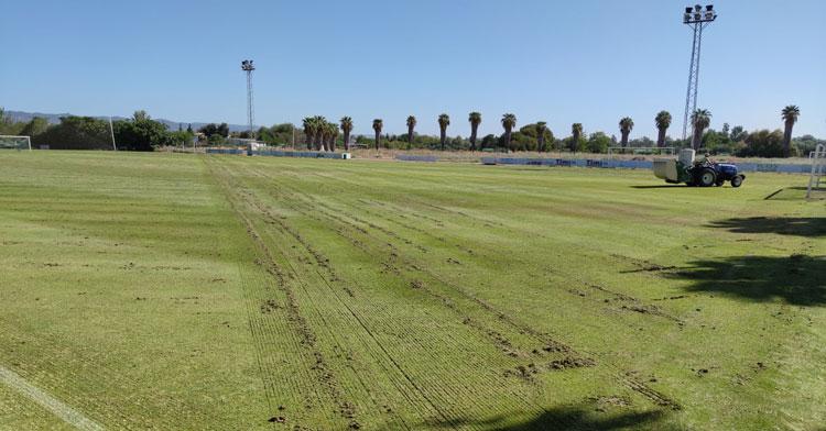 El proceso de cambio de semilla en la Ciudad Deportiva para que se mantenga el verde. Foto: CCF