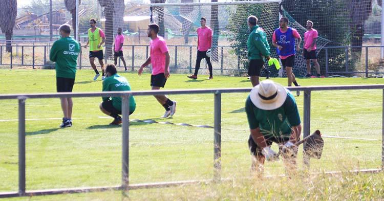Un operario adecenta los alrededores del campo 1 de la Ciudad Deportiva mientras los pupilos de Juan Sabas entrenan.