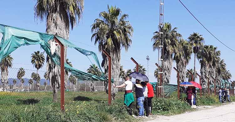 Padres y familiares se agolpan cada fin de semana en los aledaños de la Ciudad Deportiva para poder seguir a sus hijos a distancia en el Camino de Carbonell.