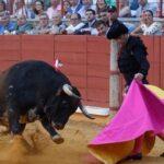 Finito de Córdoba dando recibiendo al toro.